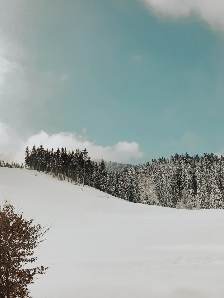 Stockinggut: A white winter wonderland in Leogang